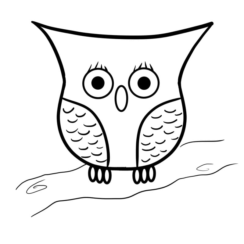 how to draw an owl step 6
