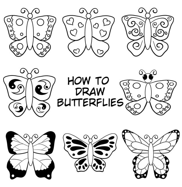 cover image how to draw butterflies