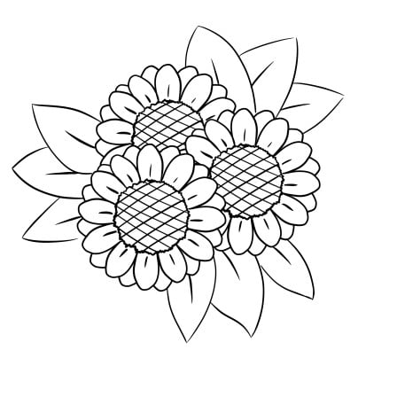 drawing sunflower step 5