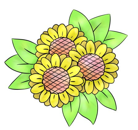 drawing sunflower step 6