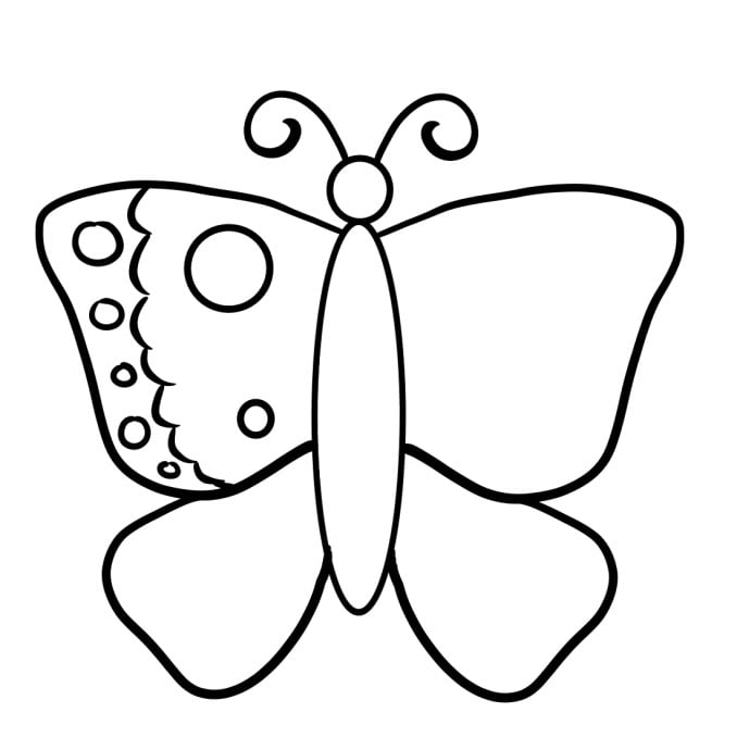 how to draw a butterfly step 4