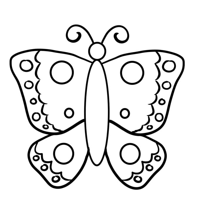 how to draw a butterfly step 6