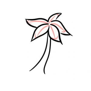 how to draw a palm tree step 2-1