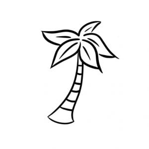 how to draw a palm tree step 4