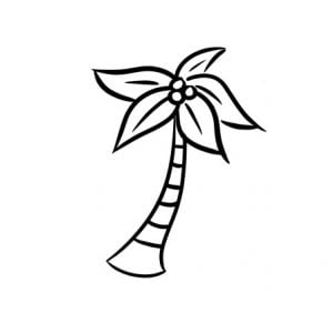 how to draw a palm tree step 5
