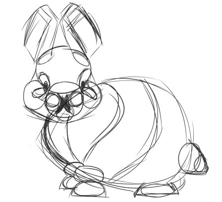 how to draw a realistic bunny step 1