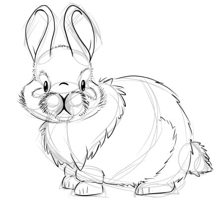 how to draw a realistic bunny step 2